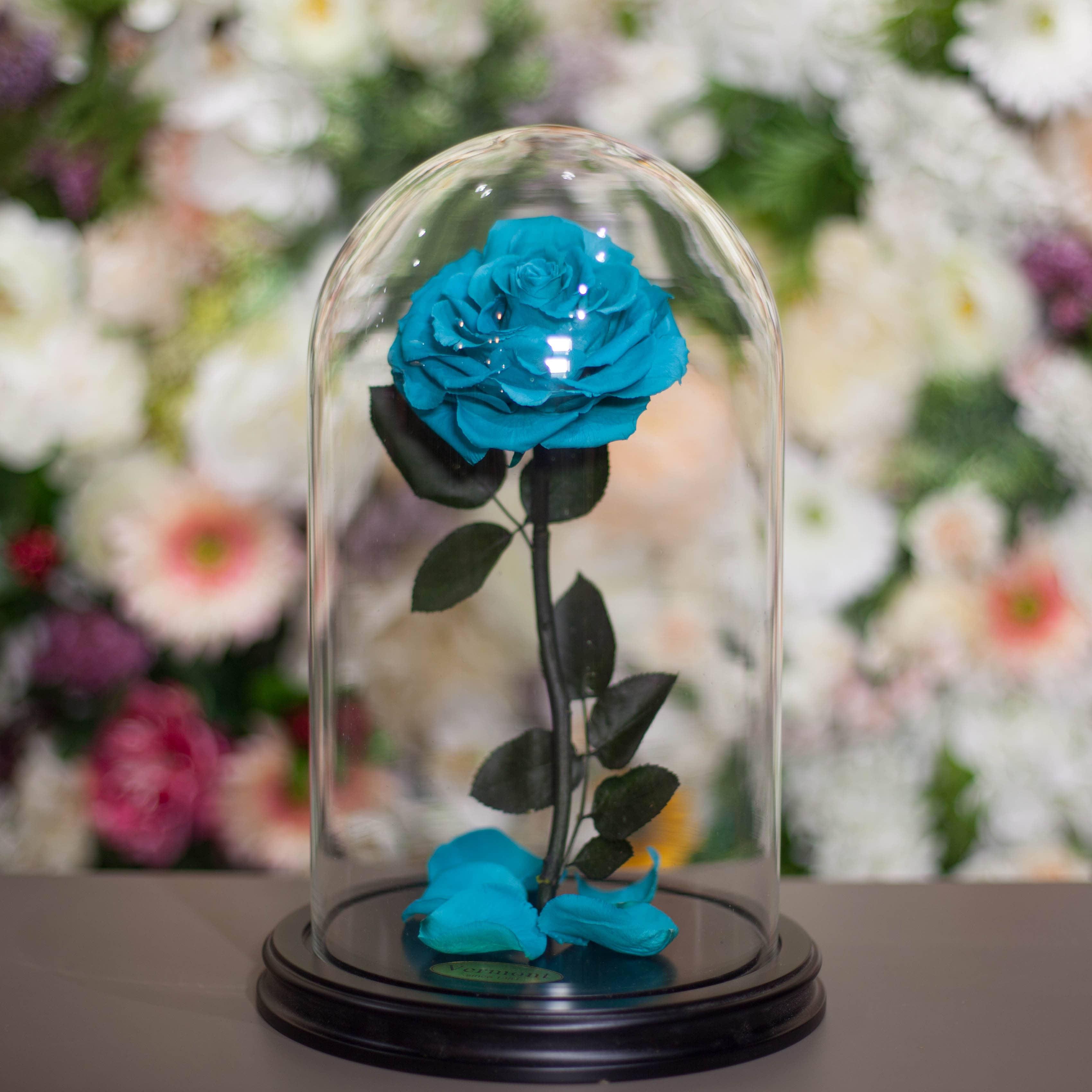 Роза в Колбе H33 * D20 Тиффани (бирюзовая) фото