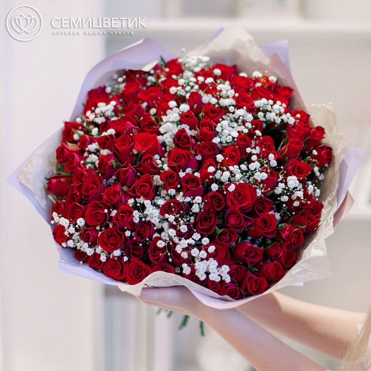 101 красная роза Standart 40 см с гипсофилой фото