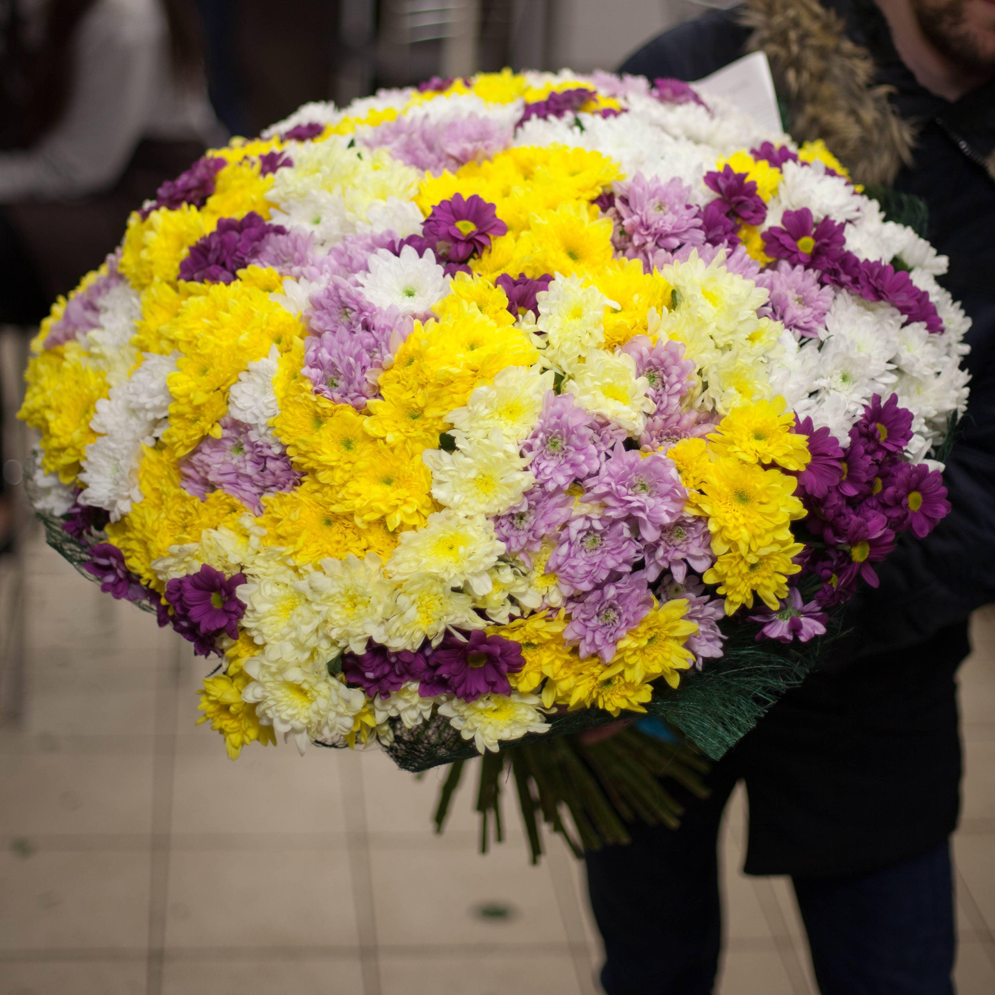 101 кустовая хризантема микс фото