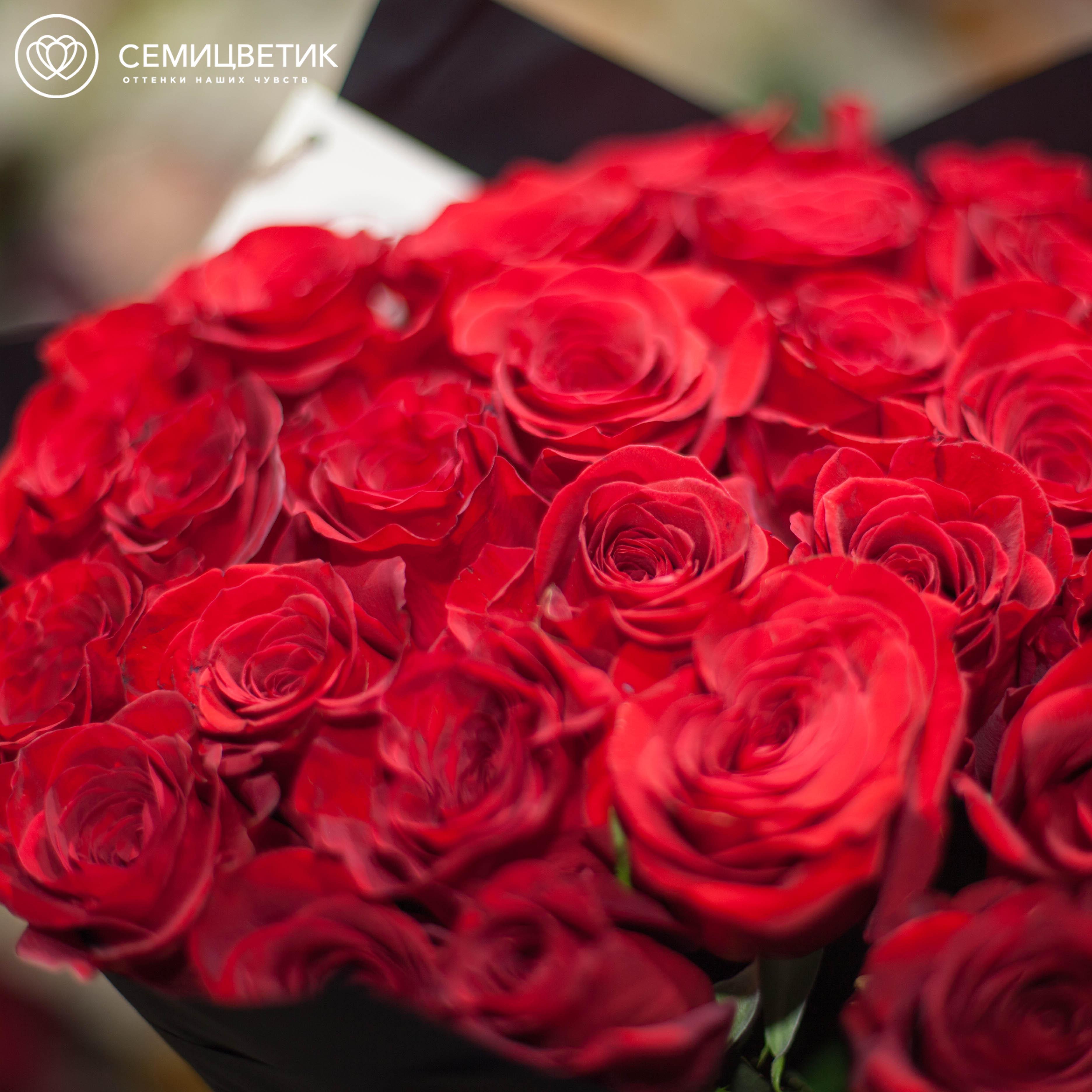 7 алых роз Nina 50 см фото