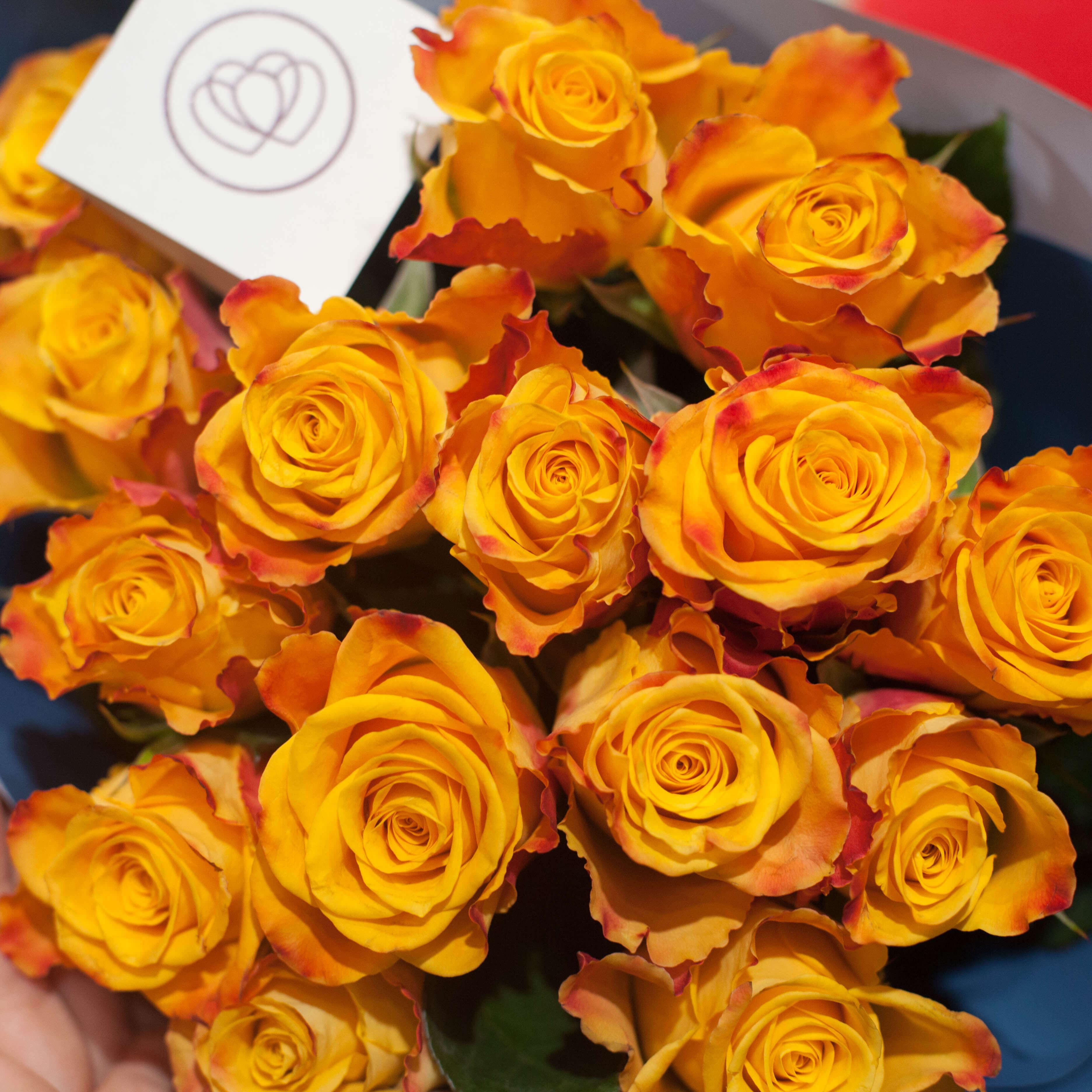 Желтые розы с красной каймой 40 см Premium фото