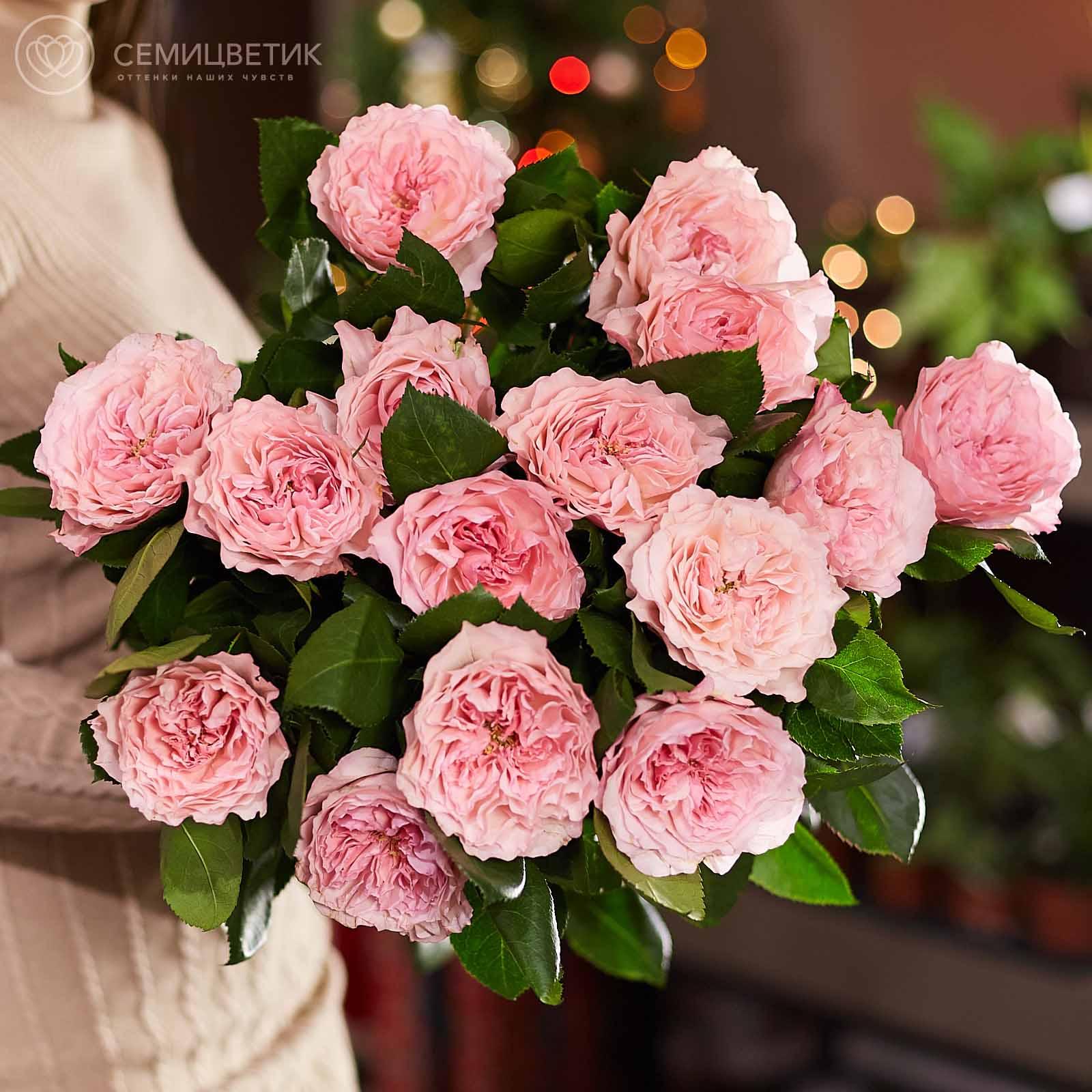 15 пионовидных роз Майрас Пинк 60 см фото