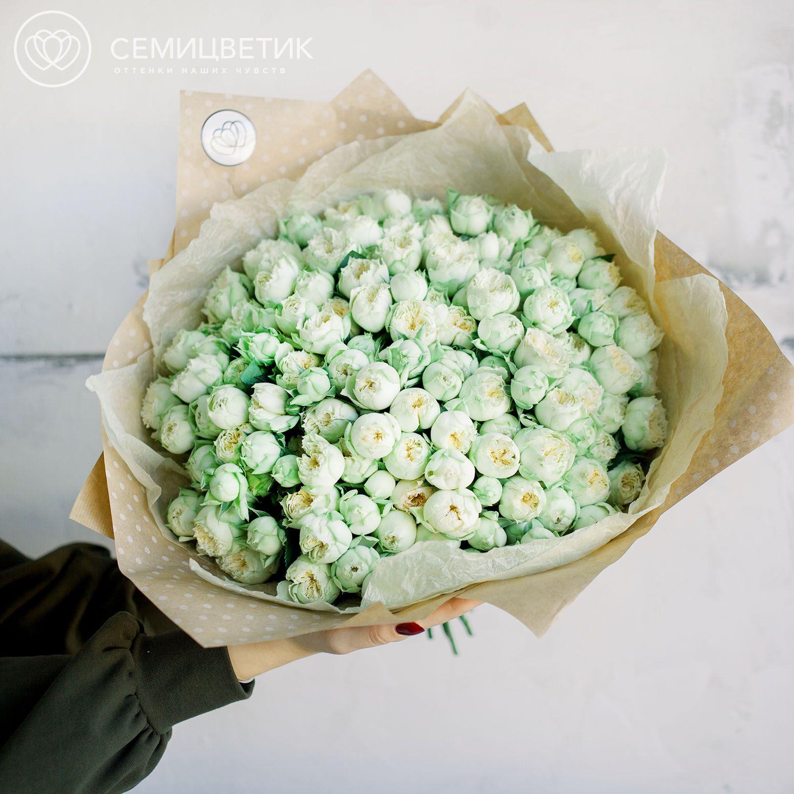 51 кустовая пионовидная роза Blanchette (бело-фисташковая) 40 см фото