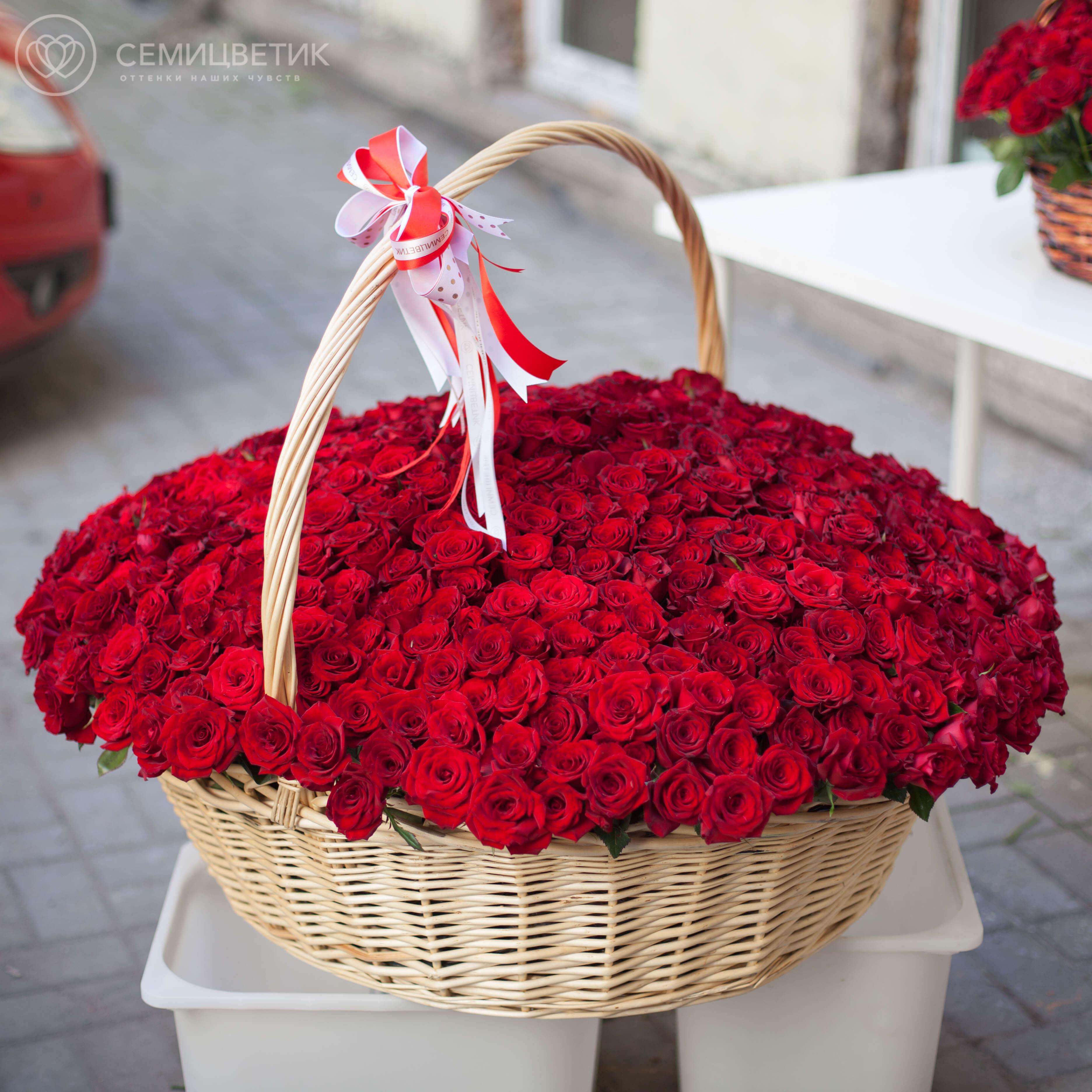 Композиция из 501 красной российской розы (Магия) 40 см в корзине фото