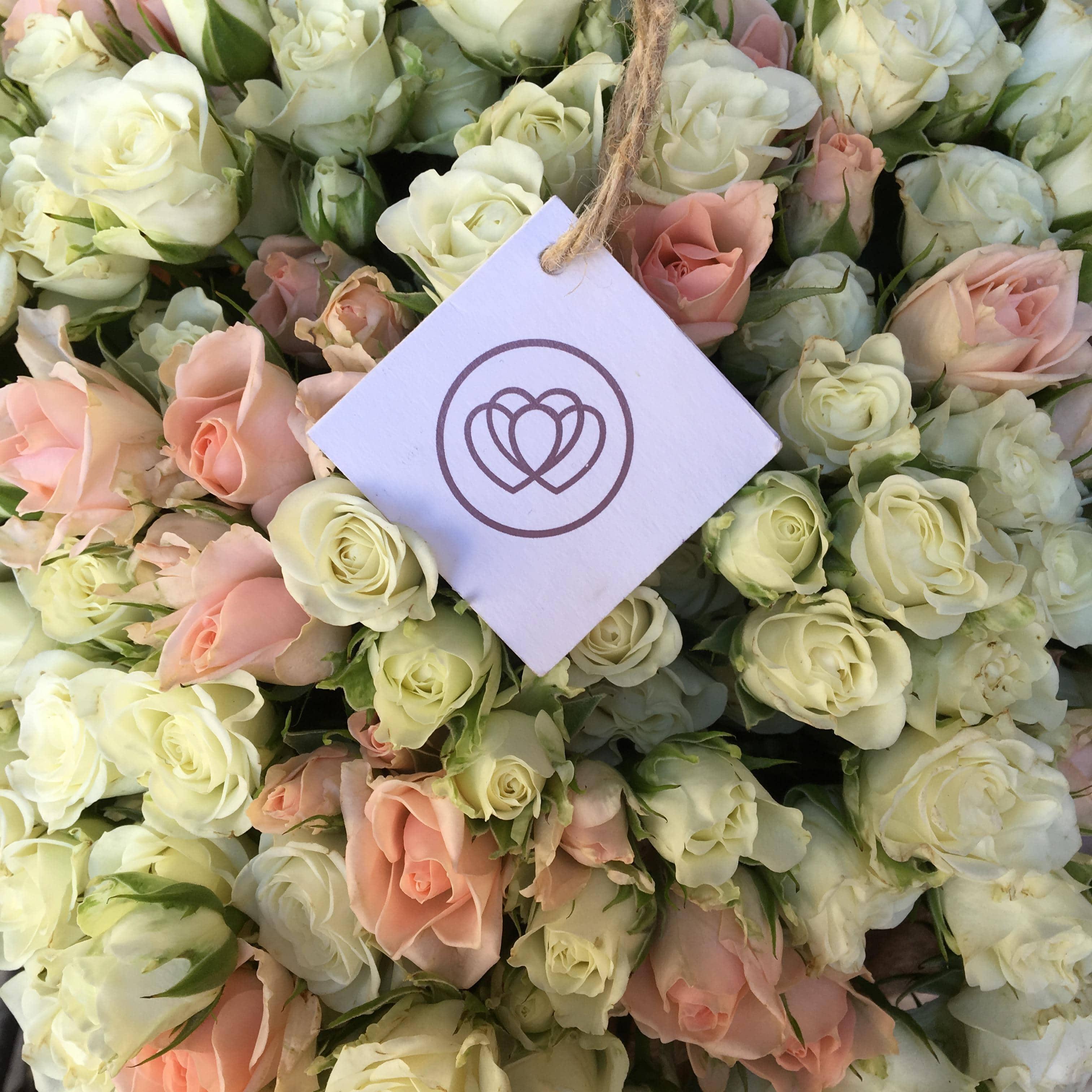 13 кустовых бело-кремовых роз 40 см фото