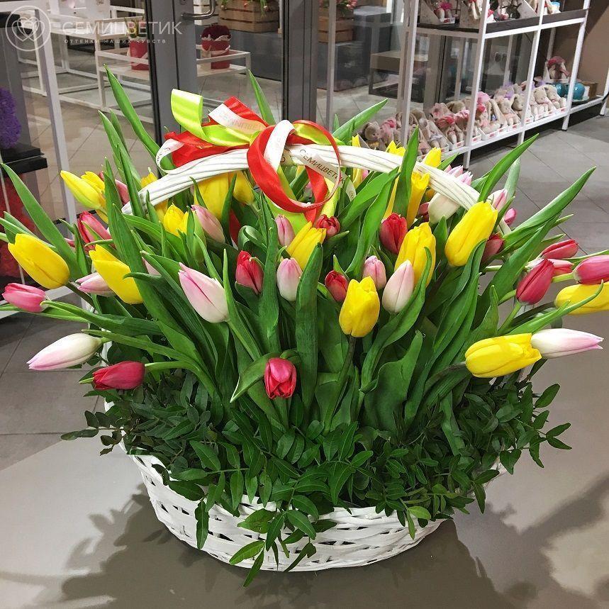 71 тюльпан в корзине фото