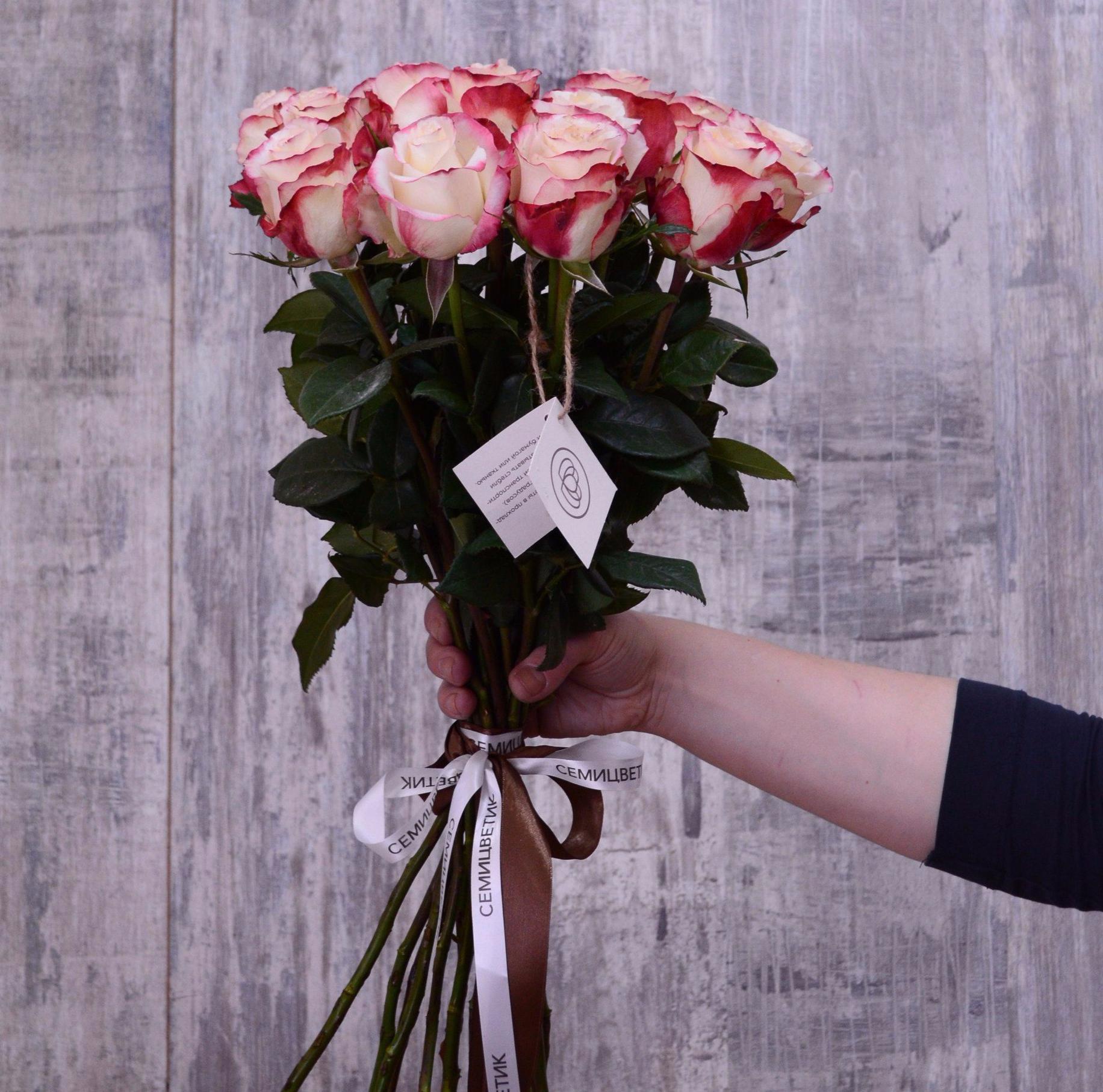 15 белых с красной каймой роз Sweetnes 50 см фото
