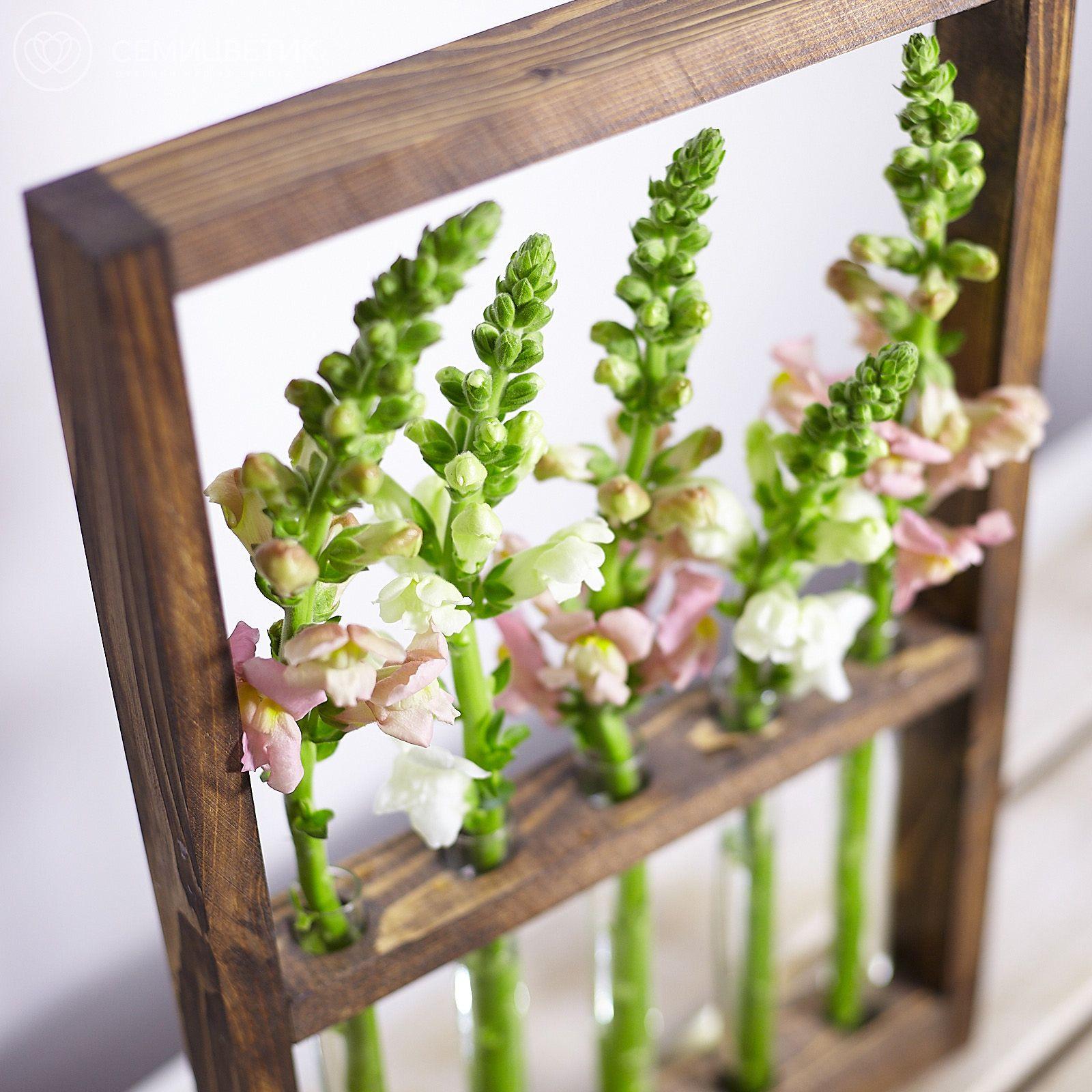 Деревянная рамка с антирринумом фото