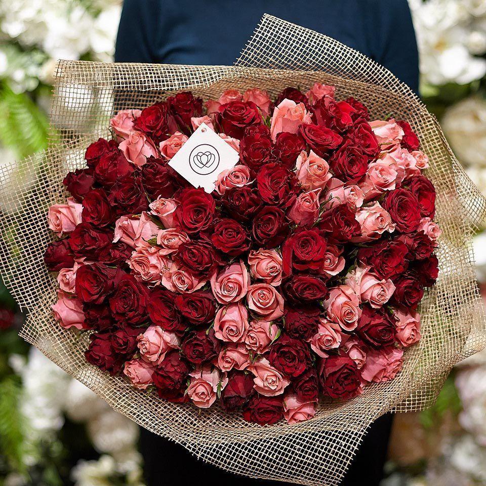 101 красная и розовая роза 40 см Premium фото