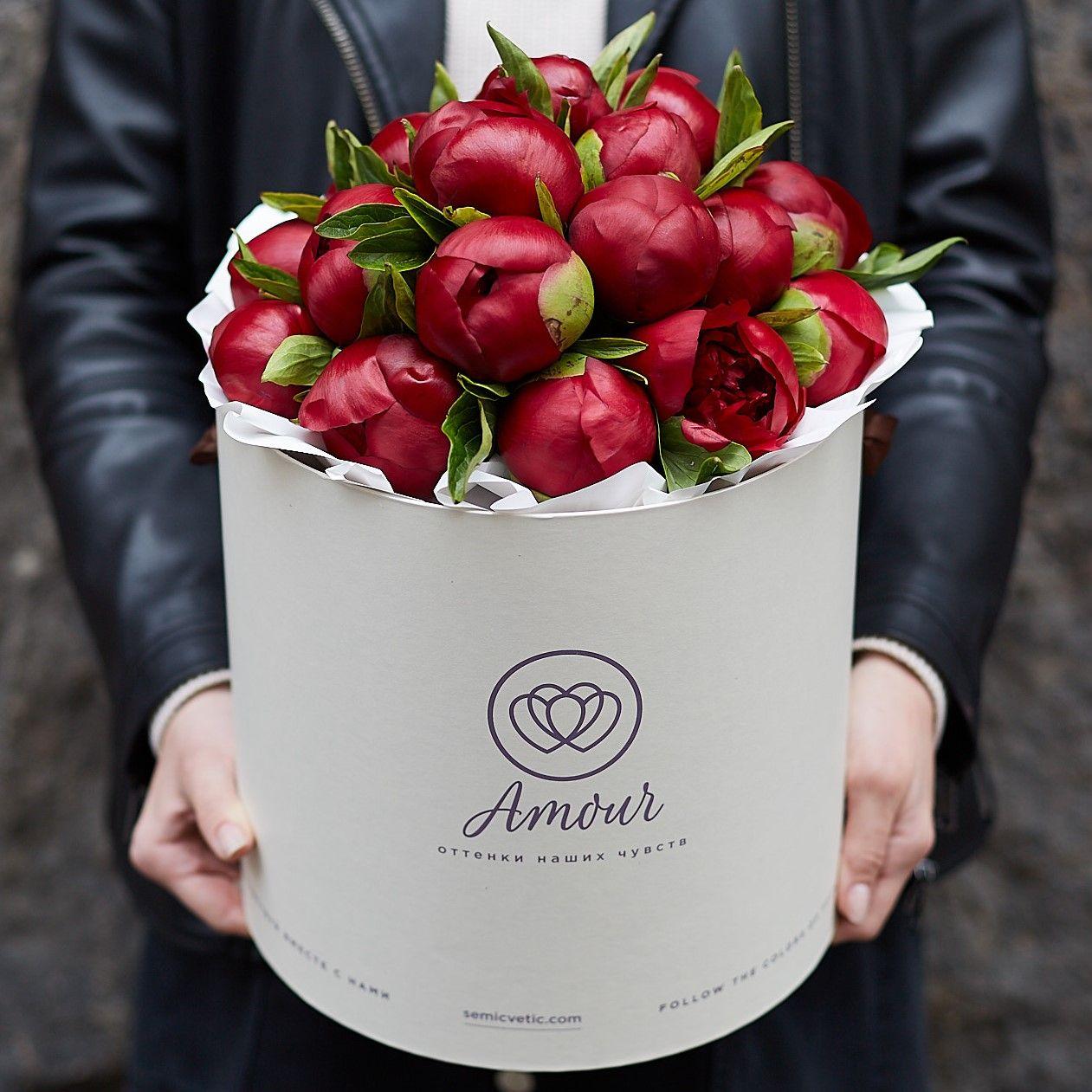 Букет в белой шляпной коробке Amour из 21 бордового пиона фото