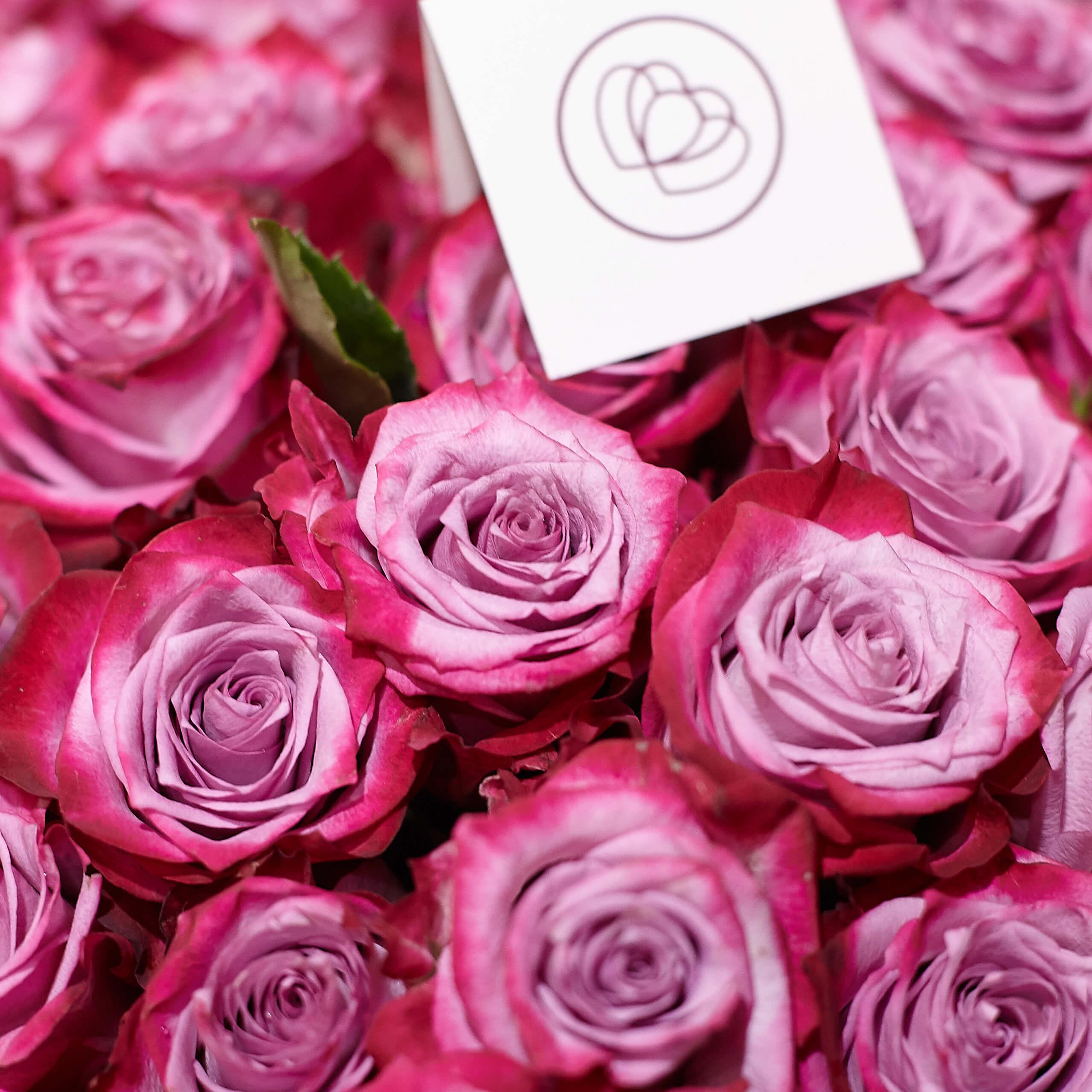 Сиреневые розы с фиолетовой каймой Deep Purple 50 см фото