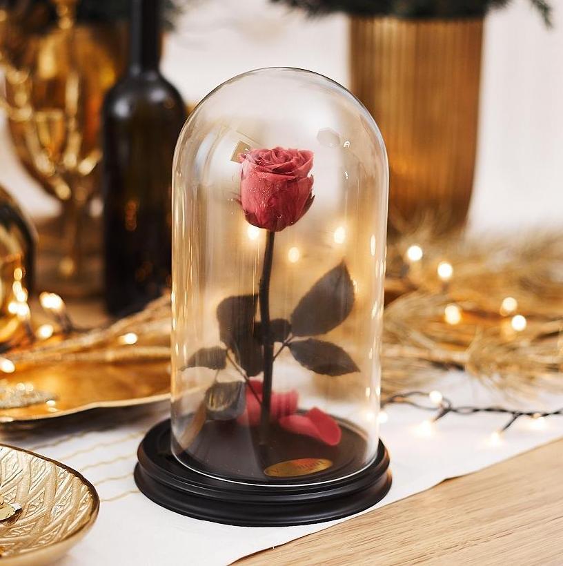 Роза в Колбе H28 * D13 Фламинго (темно-розовая) фото
