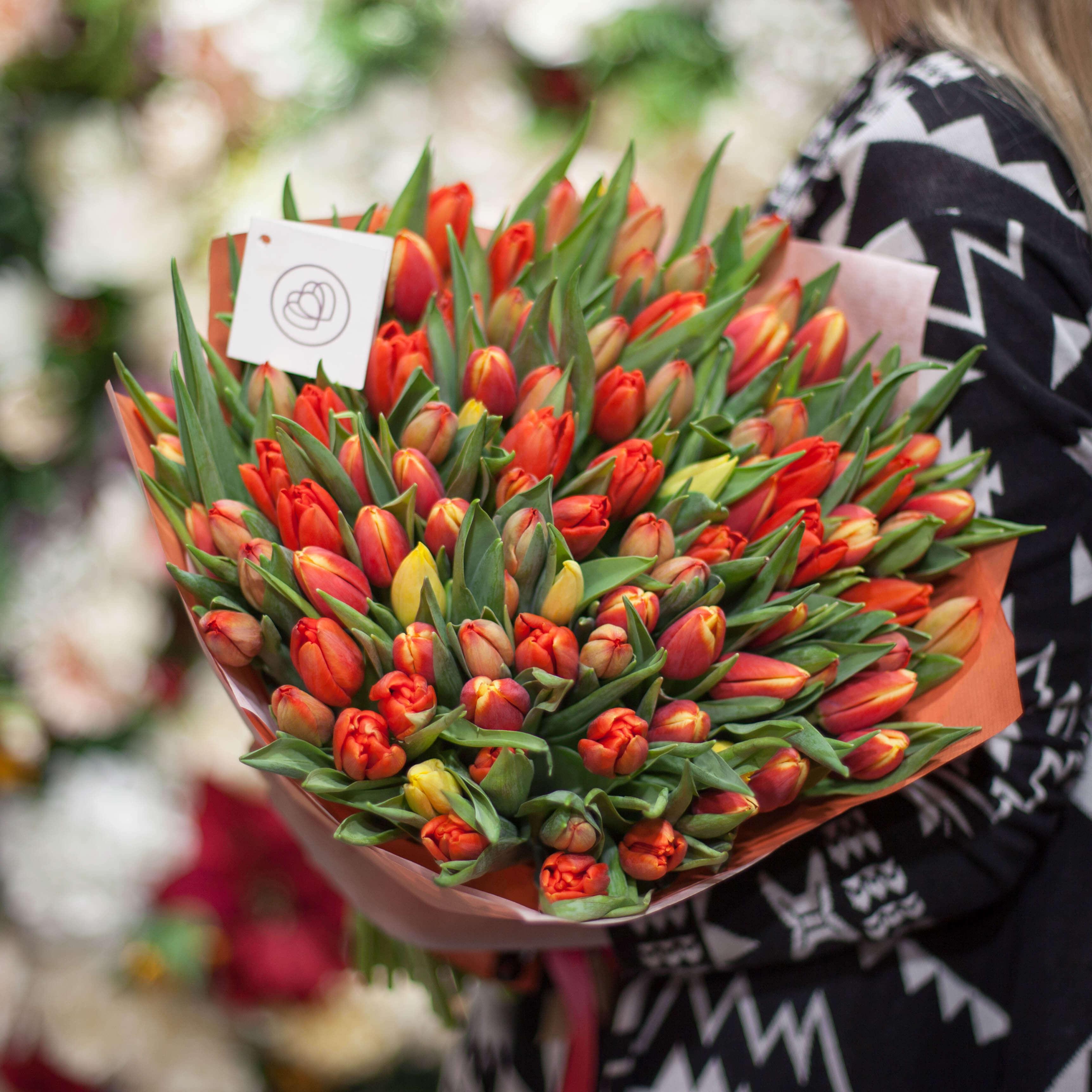 101 оранжевый тюльпан фото