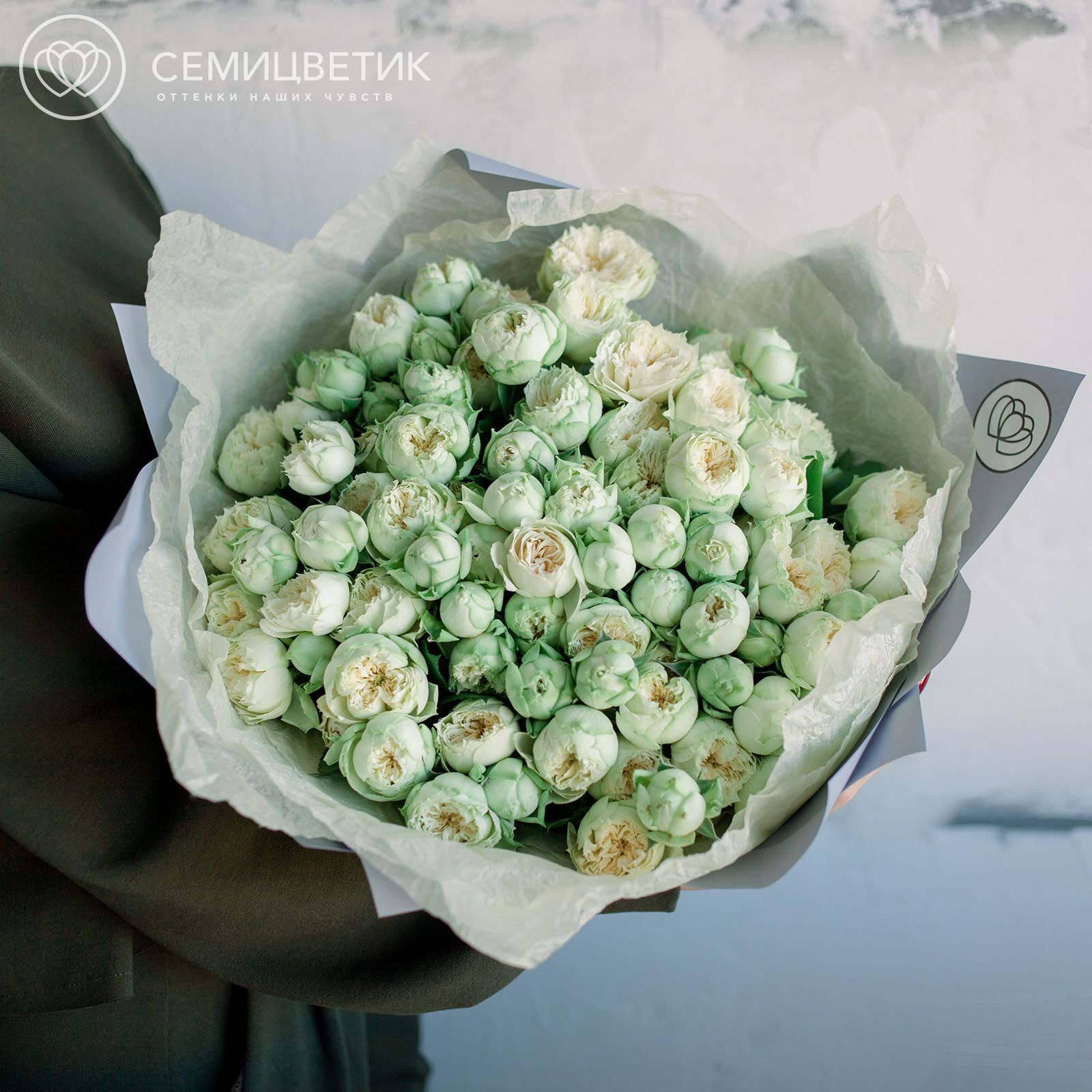 25 кустовых пионовидных роз Blanchette (бело-фисташковые) 40 см фото