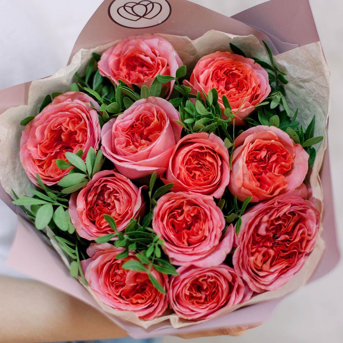 11 коралловых пионовидных роз London Eye с фисташкой фото