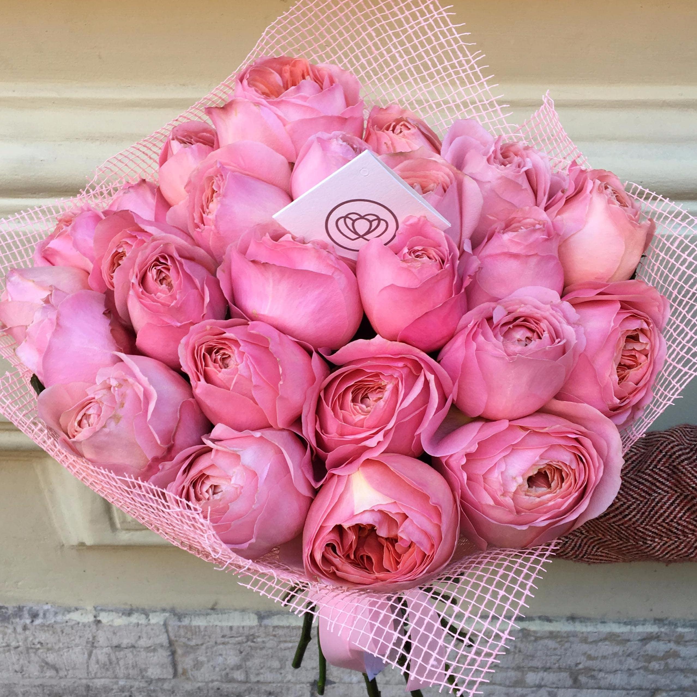 25 пионовидных роз Romantic Antike 50 см фото