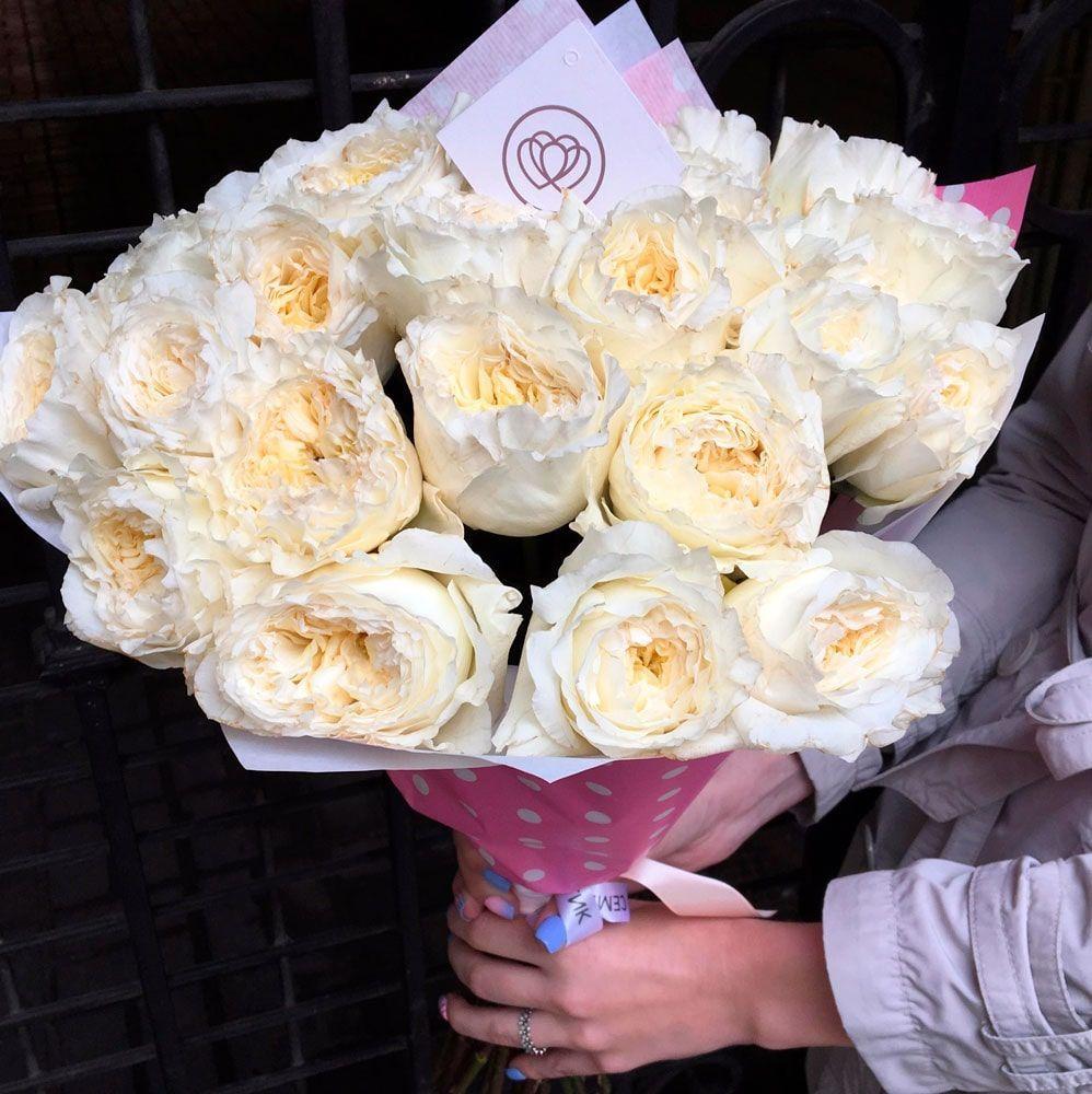25 пионовидных роз Patience 50 см фото