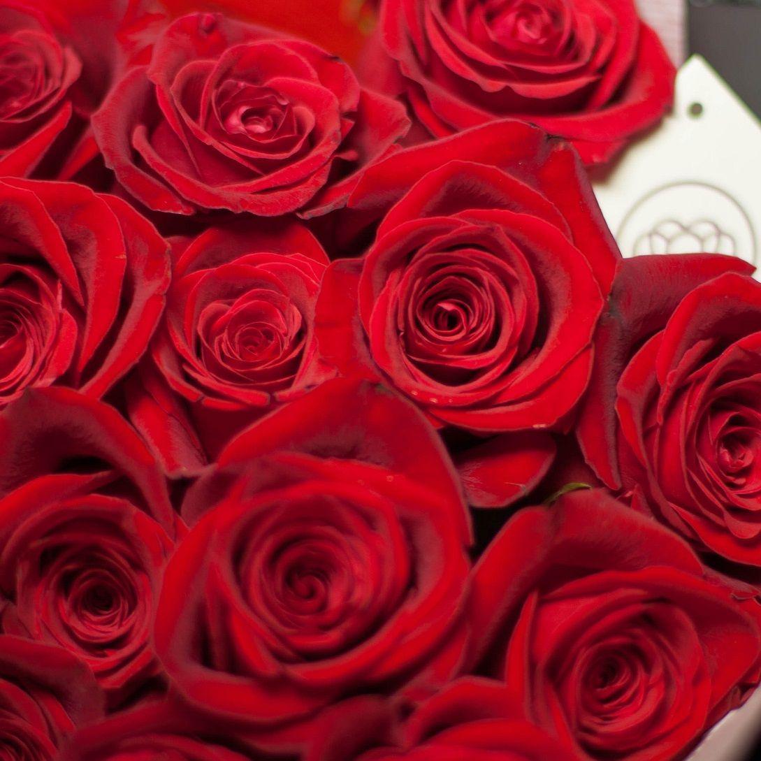 Красные розы Freedom 40 см фото