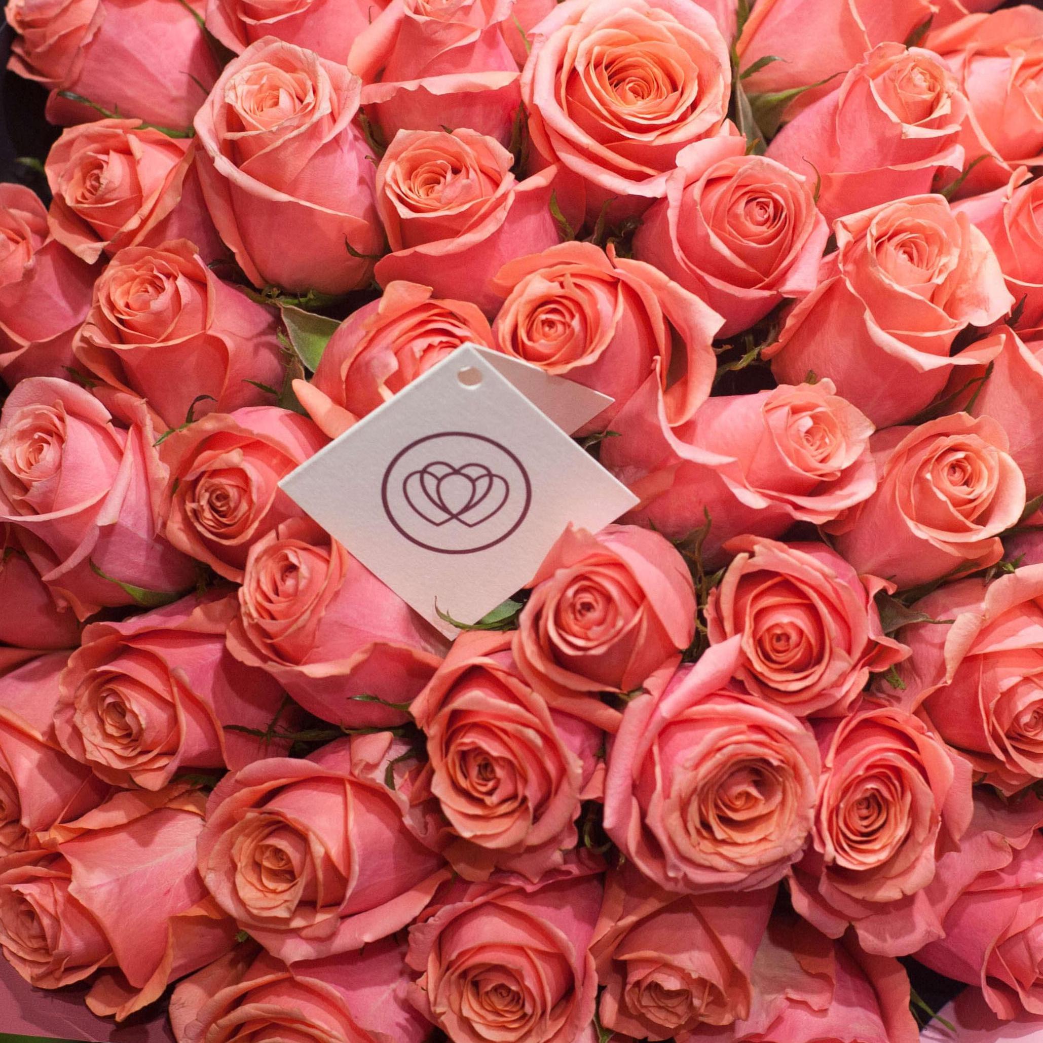 Коралловые розы 40 см Premium фото