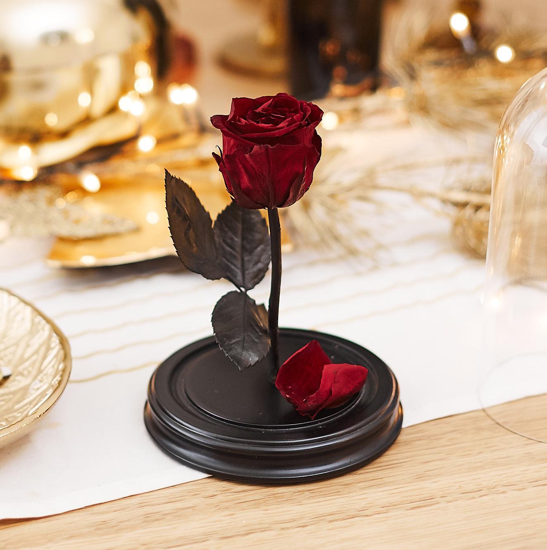 Роза в Колбе H22 * D13 Вермонт ред (красная) фото