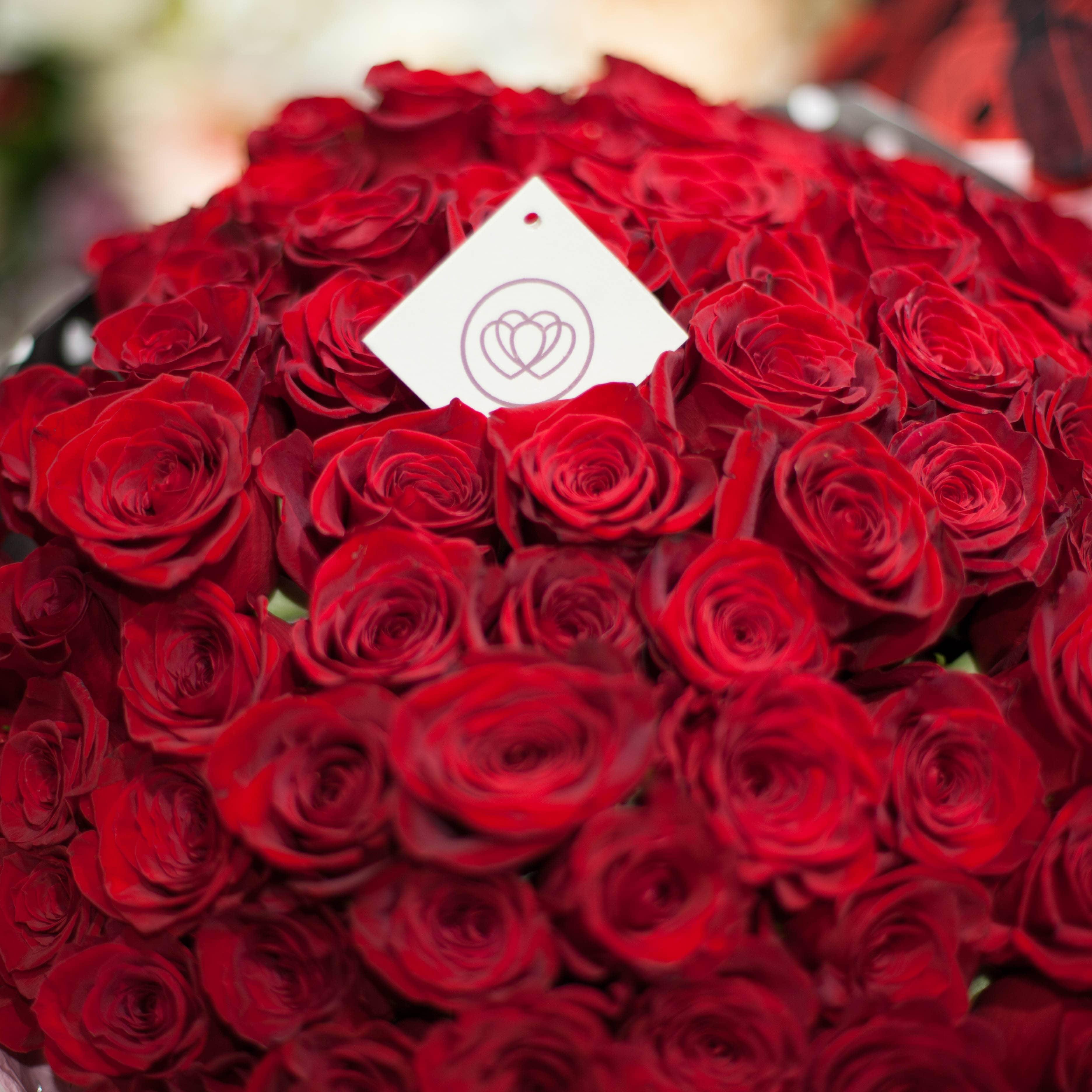 Красные розы Freedom 50 см фото
