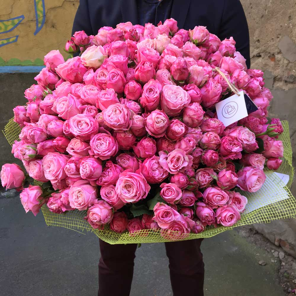 51 кустовая пионовидная роза Lady Bombastic 50 см фото